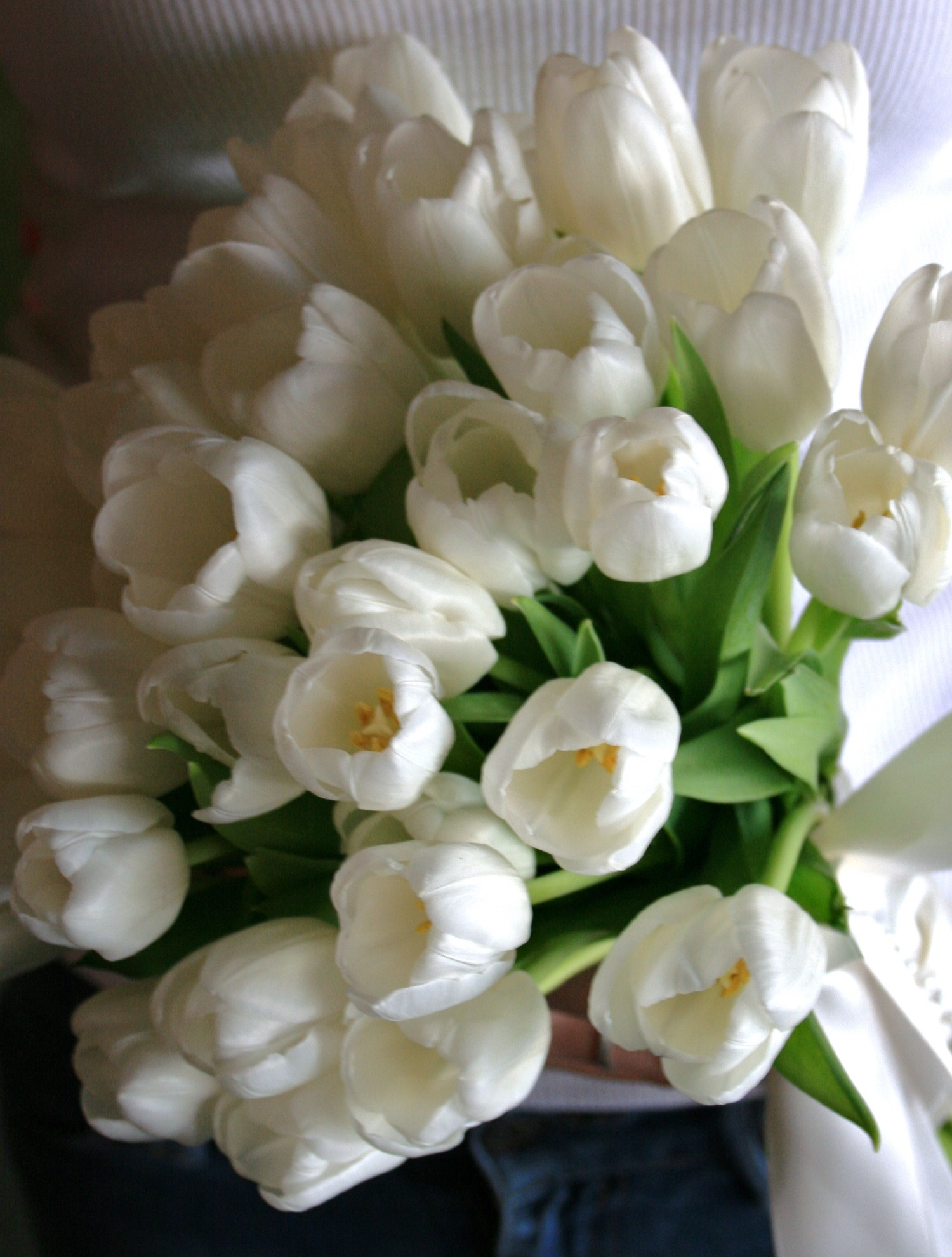 Wedding Bouquet Simple Wedding Bouquet White Tulip Bouquet
