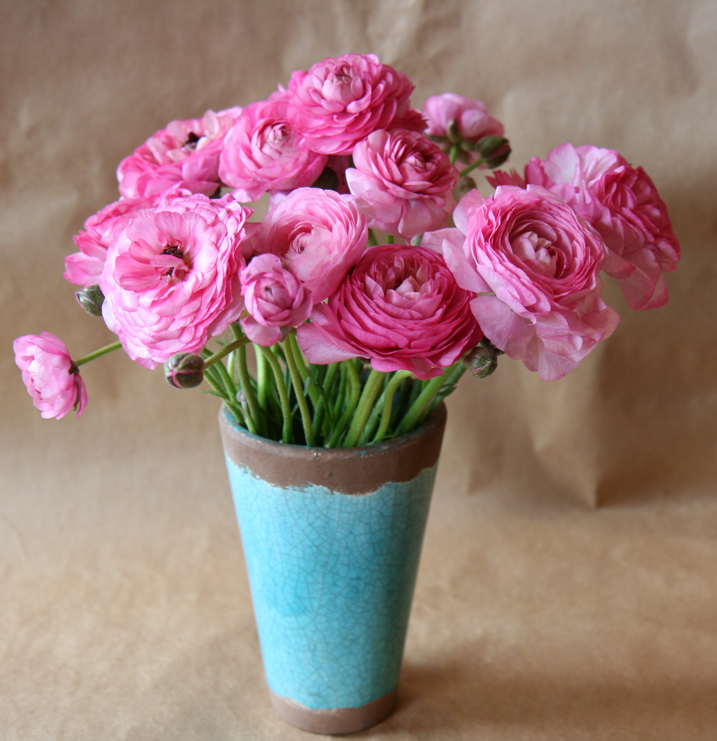 Pink Flower Arrangement Pink Ranunculus Flowers Simple Pink Flower
