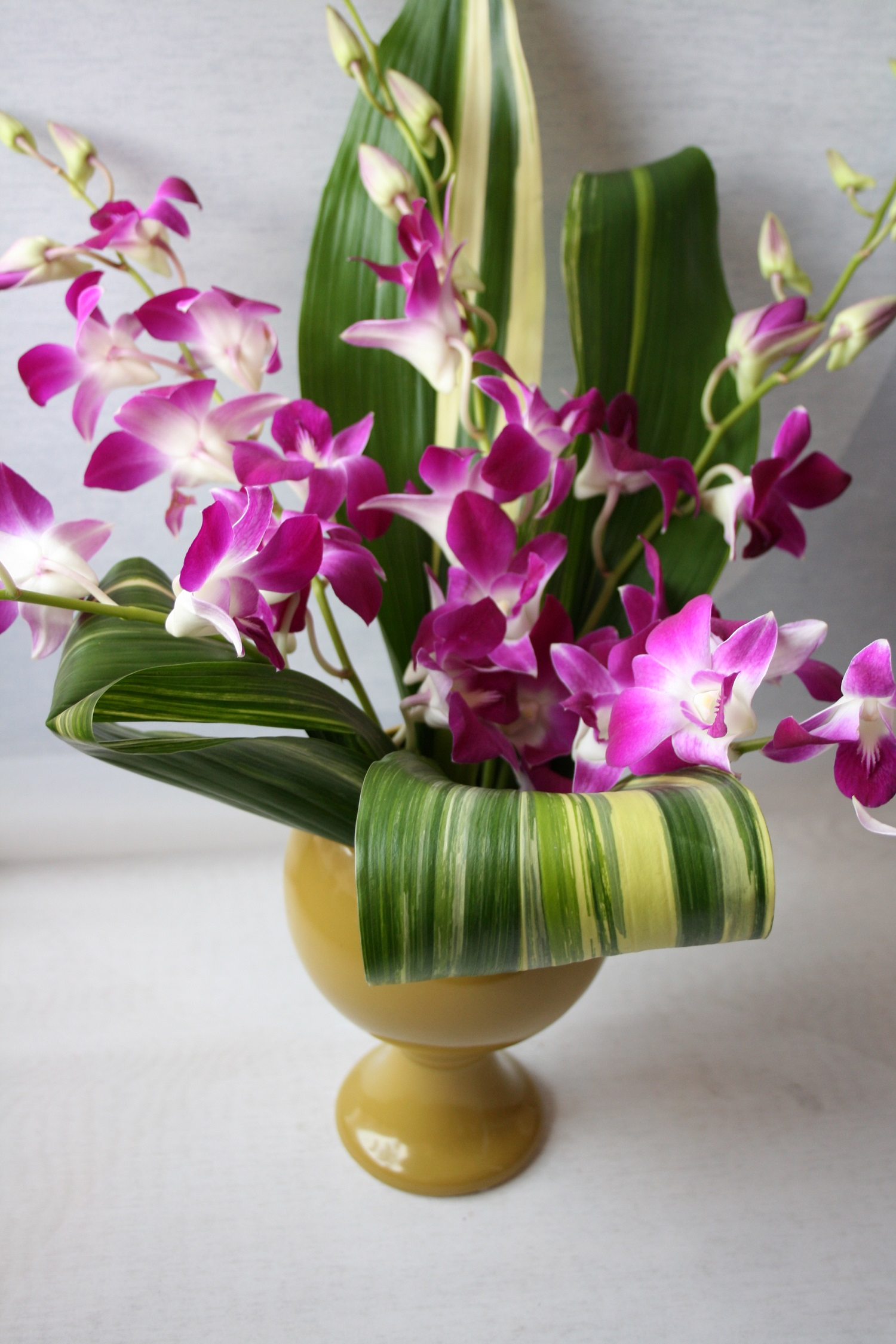 Tropical Flower Arrangement Unique Flower Arrangement Modern Flower Arrangement Modern Flower Delivery Minneapolis Purple Flowers Modern Modern Design Flower Delivery Orchids Looped Leaves Tropical Arrangement Unique Arrangement Luna Vinca