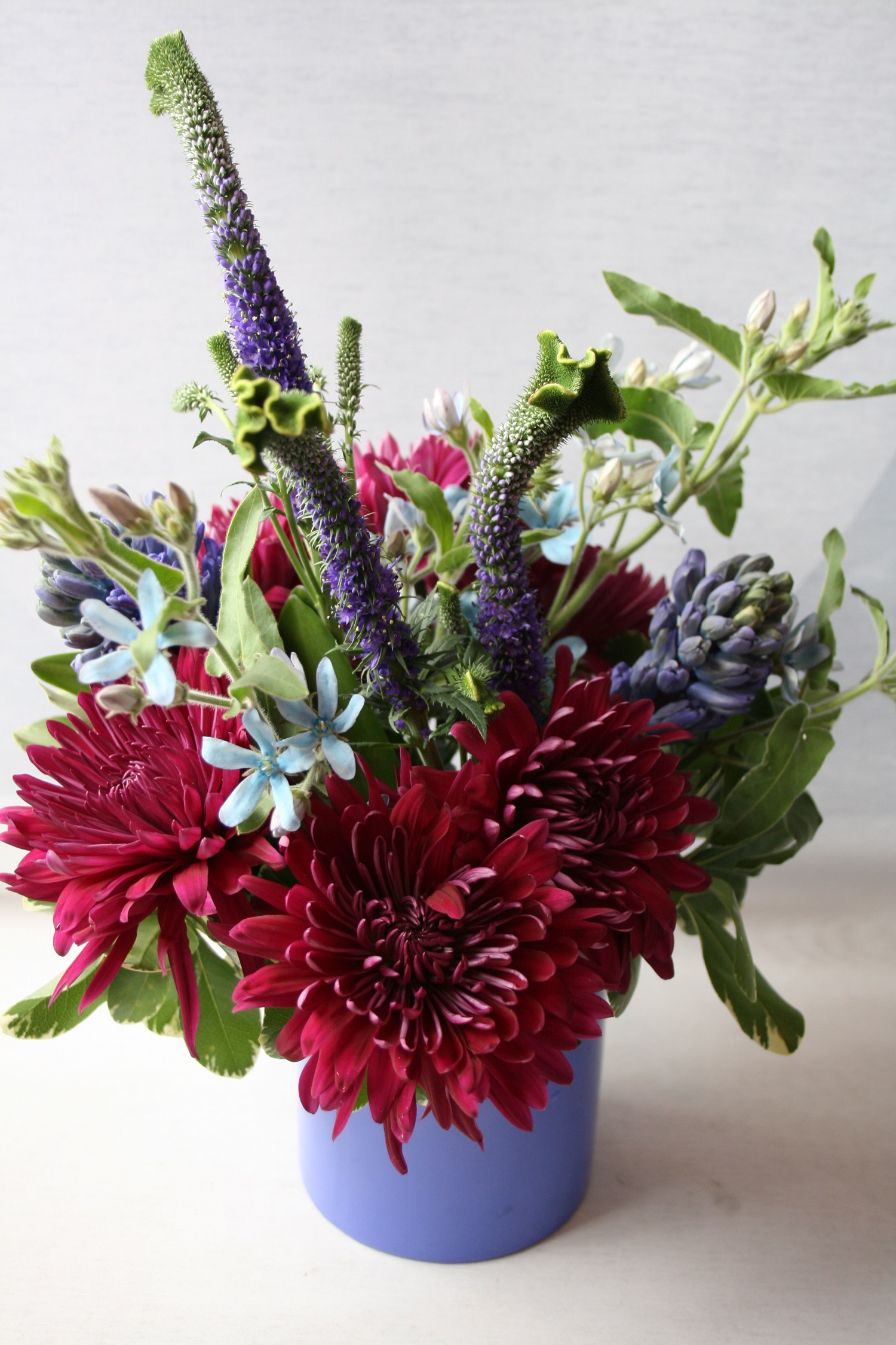 Same day flower delivery veronica flowers tweedia flower same day flower delivery veronica flowers tweedia flower minneapolis purple flowers flower delivery same day delivery downtown florist birthday izmirmasajfo