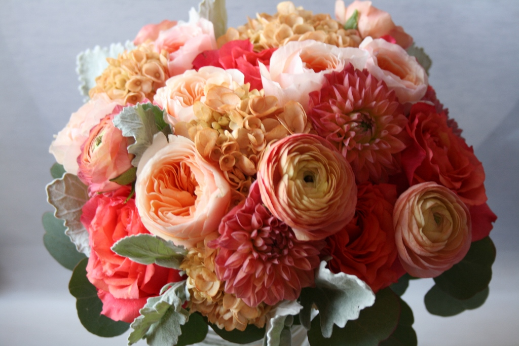 Peach Rose, Silver Foliage, Peach Garden Rose, David Austin Garden Roses,  Gray Foliage, Minneapolis, Ranunculus, Bridal Bouquet, Coral Dahlia, ...